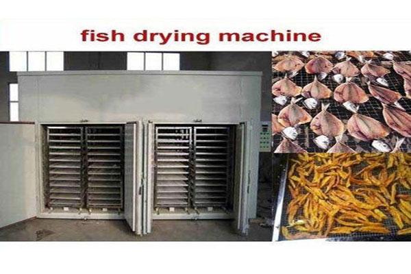 دستگاه خشک کن صنعتی ماهی