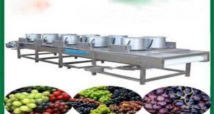 دستگاه خشک کن انگور و کشمش