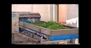 خشک کن صنعتی گیاهان دارویی
