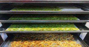خشک کن میوه و سبزی صنعتی