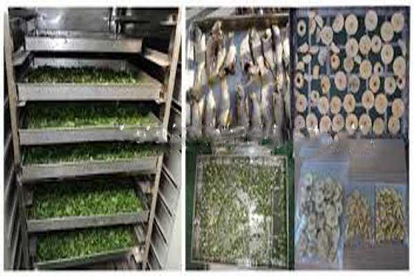 دستگاه خشک کن سبزیجات دست دوم