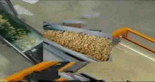 دستگاه خشک کن سویا
