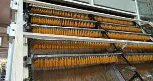 خشک کن صنعتی کشمش