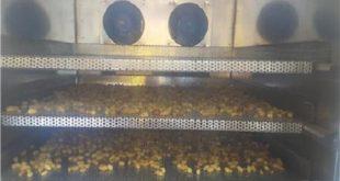 قیمت دستگاه خشک کن قارچ صدفی در بازار