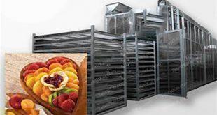 میوه خشک کن نیمه صنعتی
