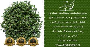 فروش دستگاه سبزی خشک کن صنعتی