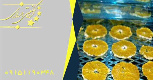 دستگاه خشک کن پرتقال