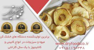 میوه خشک کن ایرانی نیمه صنعتی