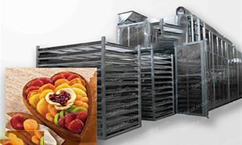 خشک کن میوه نیمه صنعتی