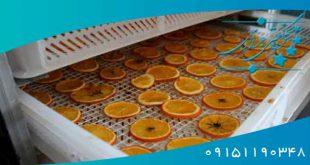 میوه خشک کن نیمه صنعتی گازی