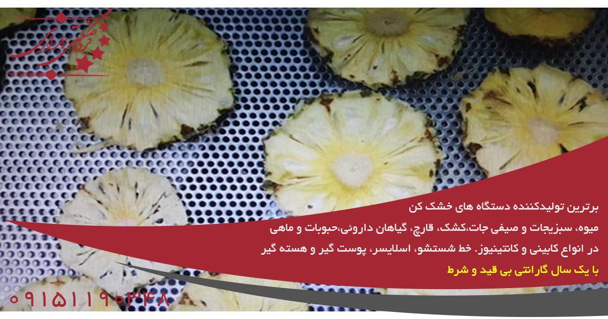 مشاوره خرید دستگاه میوه خشک کن صنعتی