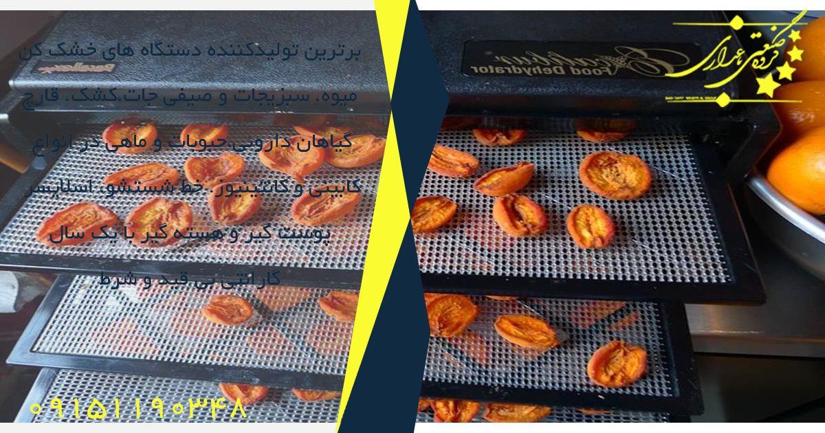 مشخصات بهترین دستگاه میوه خشک کن حرفه ای