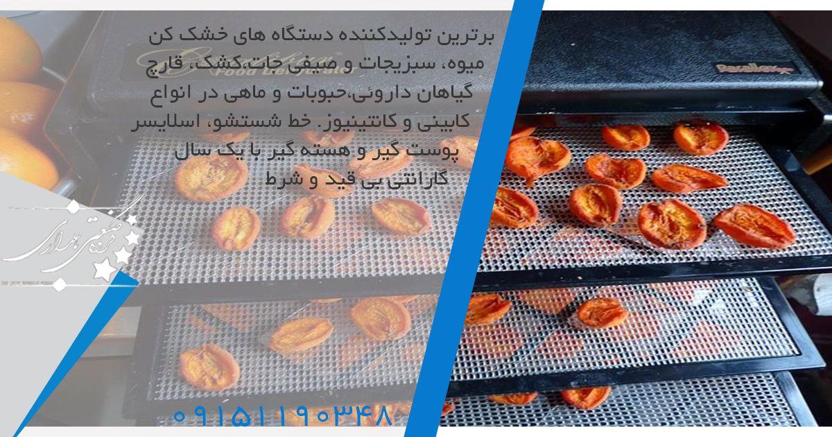 تولید کننده دستگاه خشک کن میوه انجمادی