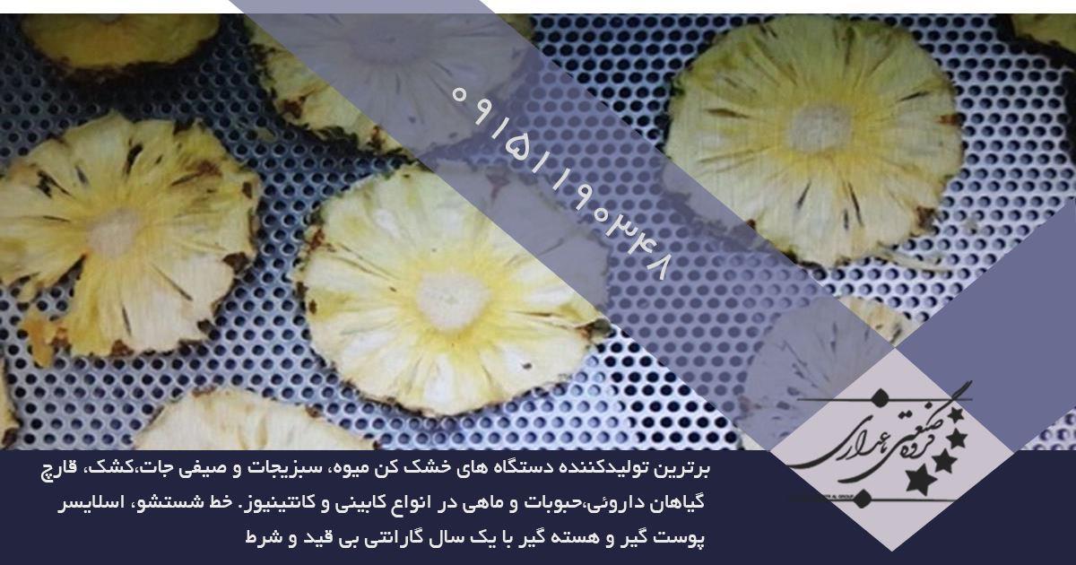 قیمت دستگاه خشک کن میوه تک کابین