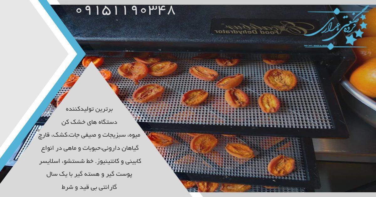 استفاده کردن از دستگاه میوه خشک کن صنعتی