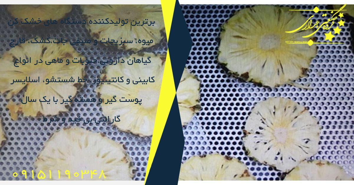 شرکت فروش دستگاه خشک کن میوه